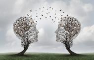 Leadership partie 13:  Les relations interpersonnelles et la communication