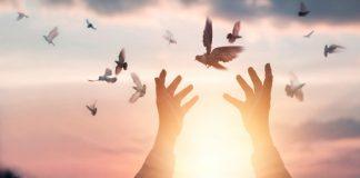 Paix-divine-